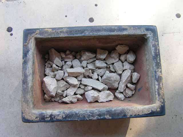 Bien remplir le fond du pot avec quelques cailloux permettant ainsi un mailleur drainage