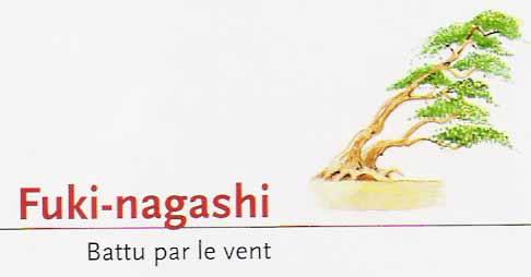 Fuki-Nagashi