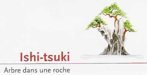 Ishi-tsuki