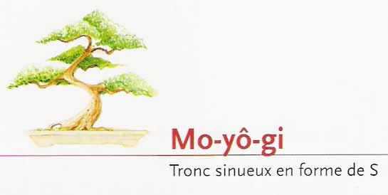 Mo-yô-gi
