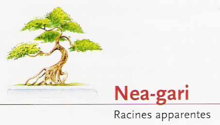 Nea-gari